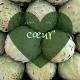 Expression française liée à la cuisine Avoir un cœur d'artichaut