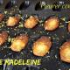Expression française liée à la cuisine pleurer comme une madeleine