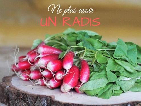 expression française liée à la cuisine : Pourquoi dit-on ne plus avoir un radis