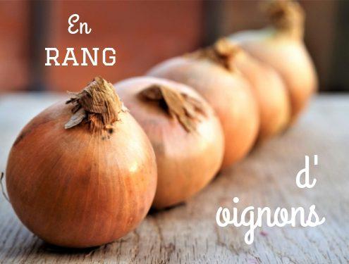 expression française liée à la cuisine : Pourquoi dit-on en rang d'oignons
