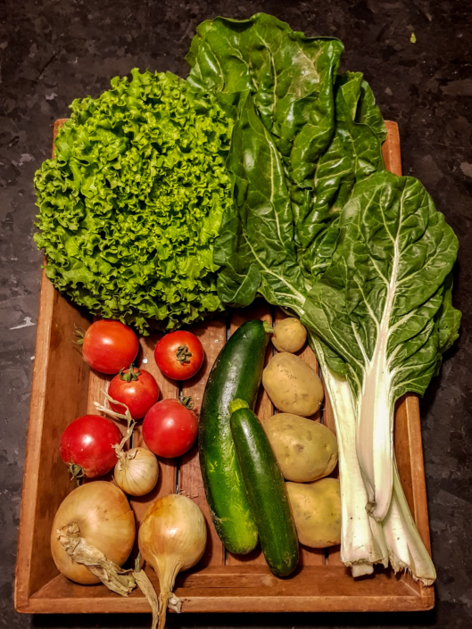 panier de légumes de saison bio de l'AMAP