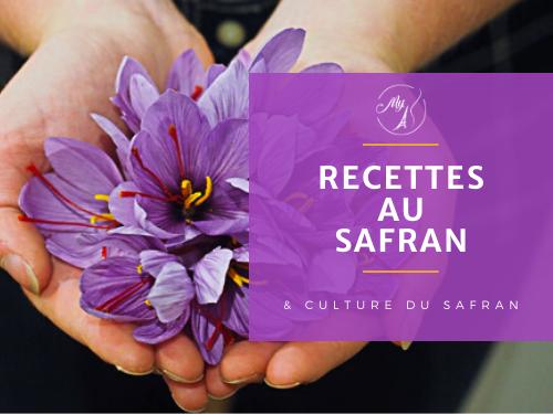 recettes au safran et culture du safran du blog culinaire My Parisian Kitchen
