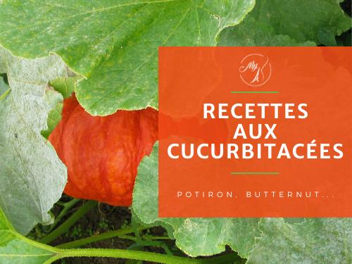 recettes aux cucurbitacées potiron, butternut, courgette, potimaron du blog culinaire My Parisian Kitchen